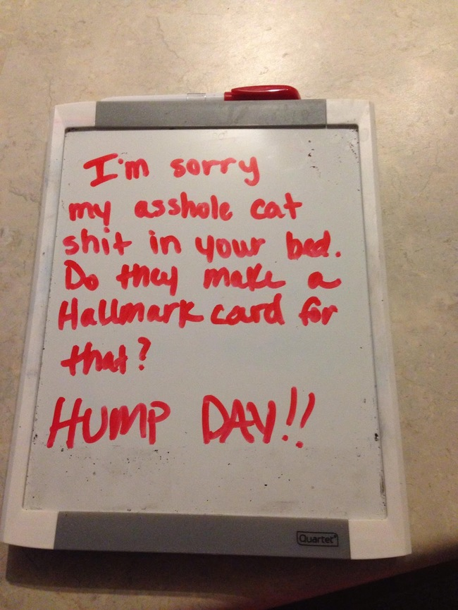 the-best-funny-pictures-of-apology-notes-2
