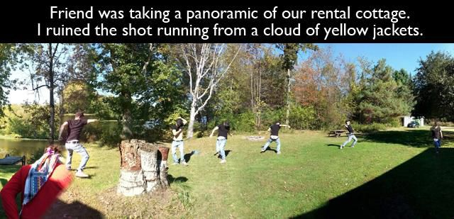 funny photo of running from yellow jackets panoramic