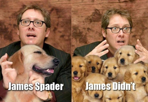 21 Very Funny Celebrity Name Puns