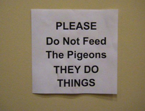 weird signs, random signs, funny signs, odd signs, funny vids, funny pictures, funny photos, funny pics