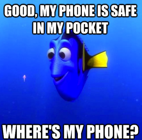 Really funny memes forgetful dory ruin my week for Is too much fish bad for you