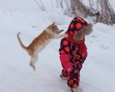 funny gifs, funny animated gifs, gifs funny, funny animal gifs, funny vids, funny reaction gifs, funny moving gifs, funny kid gifs