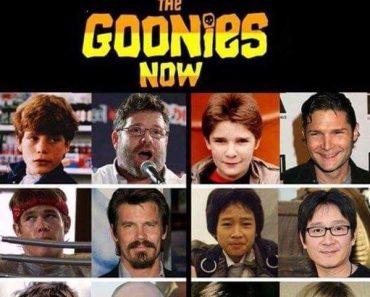 funny pics, funny pictures, funny photos, funny photo, funny pic, funny pics, funny vid, funny vids, the goonies, then and now, the goonies then and now, donald trump sloth, the goonies now, sloth, donald trump, sloth donald trump, the goonies donald trump, goonies now, goonies donald trump