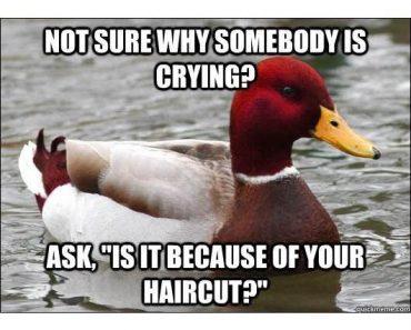 advice mallard, malicious advice mallard, bad advice mallard, advice duck, malicious mallard, mallard meme, bad advice duck, advice meme, mallard duck meme, duck advice, angry advice mallard, bad advice mallard meme, meme, memes, funny meme, funny memes, mallord duck, meme duck, classic memes, classic meme, funny vids, funny pics, funny pictures, funny photos, best funny pictures