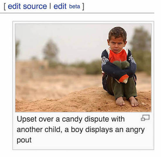 wikipedia, wikipedia photo captions, funny wikipedia, funny wikipedia photo captions, wikipedia photo, photo wikipedia, funny wikipedia edits, wikipedia editing