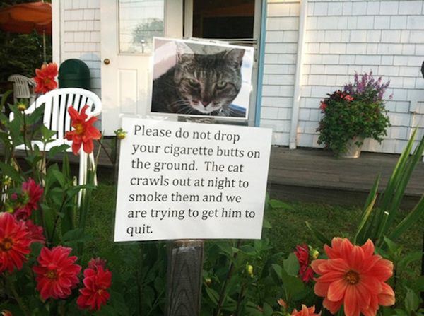 Funny Yard Sale Meme : Funny yard signs for all of your attention grabbing needs