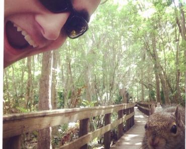 selfie with a squirrel, squirrel selfie, funny squirrel, squirrel funny, animal selfies, animal selfie, selfies gone wrong, selfie fails, selfie fail, worst selfie, worst selfie ever, bad selfies, funny selfie, funny selfies