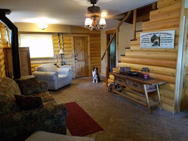 find the dog, hidden dog, wheres waldo, wheres waldo dog, funny dog, funny dogs, spot the dog, where's the dog, where's waldo, where's waldo dog, dog in cabin, dog hiding, dog hiding in cabin, hidden things, hidden items, sly dog, sneaky dog, can you find the dog