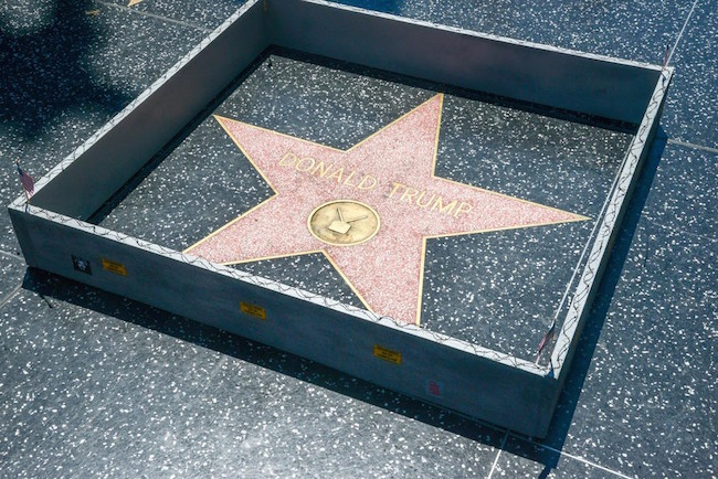 donald trump, trump, trump wall, wall trump, donald trump wall, trump wall star, walk of fame wall, donald trump's star, trump walk of fame wall, donald trump walk of fame wall, funny donald trump, funny trump, trump funny, donald trump funny, build a wall, mexico wall, trump wall mexico, trump mexico wall, plastic jesus, street artist