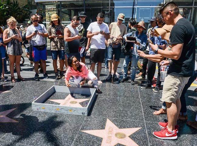 donald trump, trump, trump wall, wall trump, donald trump wall, trump wall star, walk of fame wall, donald trump's star, trump walk of fame wall, donald trump walk of fame wall, funny donald trump, funny trump, trump funny, donald trump funny, build a wall, mexico wall, trump wall mexico, trump mexico wall, plastic jesus, street artist