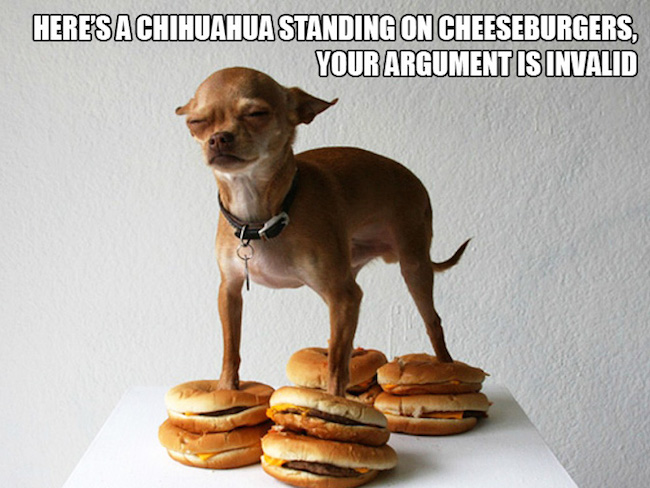 Funny Dog Memes: Let's Give A Standing Ovation To These Awkwardly Standing Dogs