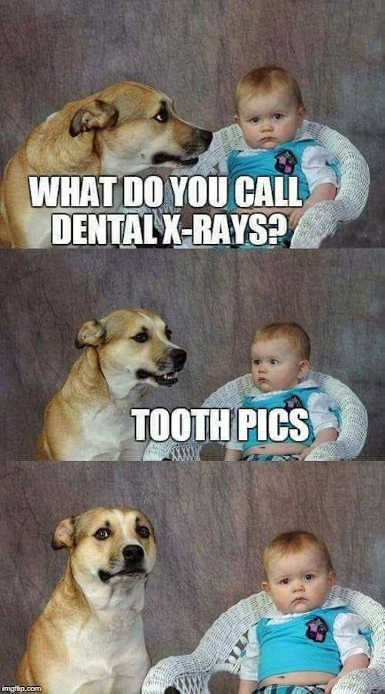 funny pic of a dog and baby telling bad jokes tooth pics