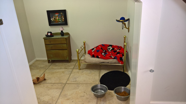 tiny chihuahua room, aunt built room for chihuahua, women built tiny room for chihuahua, funny chihuahua, chihuahua funny, chihuahua room, funny dog, funny dogs, dog, dogs, dogs funny, dog funny, funny pictures of dogs, funny dogs and cats, funny pics of dogs, pictures of funny dogs, funny images of dogs, dogs being funny, cute funny dogs, funny photos of dogs, funny cute dogs, dogs with funny faces, images of funny dogs, funny dogs with captions, funny pictures of cats and dogs, funny pictures dogs, funny pictures of dogs and cats, pics of funny dogs, funny pictures of dogs with captions, cute and funny dogs, funny dogs images, really funny dogs, dogs images funny, funny dogs photos, very funny dogs, dogs are funny, funny funny dogs, dogs that are funny, funny pics of dogs with captions, funny small dogs, funny big dogs, funny and cute dogs, funny pics of dogs and cats, funny pics dogs, pictures of funny looking dogs, funny pics of cats and dogs, funny looking dogs pictures, funny little dogs, funny pictures with dogs, photos of funny dogs, most funny dogs, funny dogs and puppies, funny cats and funny dogs, funny pictures about dogs, i love funny dogs, pictures of funny dogs and cats, images funny dogs, really funny pictures of dogs, pictures funny dogs