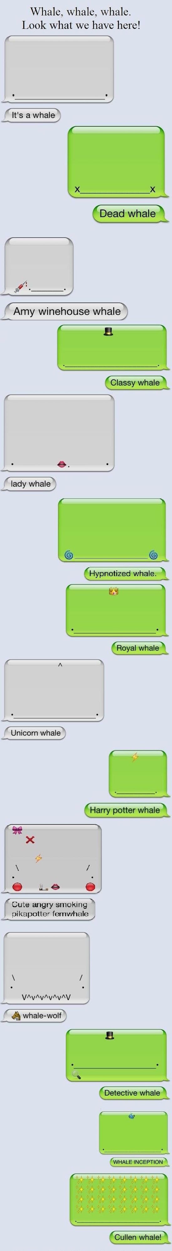 funniest picture of whale texts