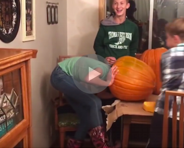 girl gets her head stuck in a pumpkin, girl head stuck in pumpkin, head stuck in pumpkin, pumpkin fail, pumpkin fails, halloween fail, halloween fails, funny halloween, halloween funny, pumpkinhead, pumpkin on head, funny video, funny videos, funny vid, funny vids, funniest videos, funniest video ever, funniest videos 2016, funniest videos 2017, funniest videos 2018, funniest videos 2019, funniest videos 2020, best videos 2016, best videos 2017, best videos 2018, best videos 2019