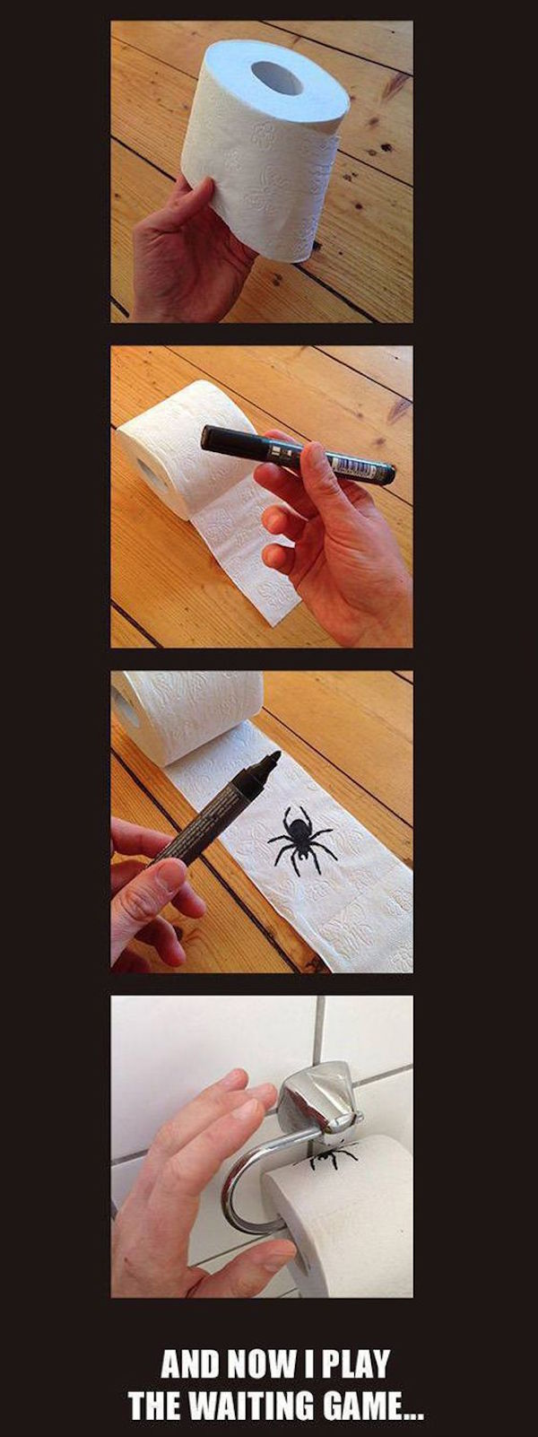funny pictures of mean prank spider drawn on toilet paper