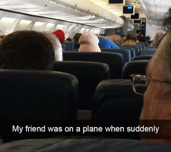 20 Of The Funniest Airplane Occurrences To Ever Take Place