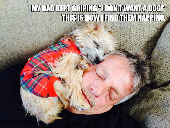 dads who didn't want dogs, dads who didnt want dogs, dads didnt want dogs, dads and dogs, dogs and dads, funny dads dogs, funny dogs dads, dads who said they didn't want dogs, dads didn't want a dog, reluctant pet parents, reluctant dog owners, reluctant dog dads, funny dog, funny dogs, dog, dogs, dogs funny, dog funny, funny pictures of dogs, funny dogs and cats, funny pics of dogs, pictures of funny dogs, funny images of dogs, dogs being funny, cute funny dogs, funny photos of dogs, funny cute dogs, dogs with funny faces, images of funny dogs, funny dogs with captions, funny pictures of cats and dogs, funny pictures dogs, funny pictures of dogs and cats, pics of funny dogs, funny pictures of dogs with captions, cute and funny dogs, funny dogs images, really funny dogs, dogs images funny, funny dogs photos, very funny dogs, dogs are funny, funny funny dogs, dogs that are funny, funny pics of dogs with captions, funny small dogs, funny big dogs, funny and cute dogs, funny pics of dogs and cats, funny pics dogs, pictures of funny looking dogs, funny pics of cats and dogs, funny looking dogs pictures, funny little dogs, funny pictures with dogs, photos of funny dogs, most funny dogs, funny dogs and puppies, funny cats and funny dogs, funny pictures about dogs, i love funny dogs, pictures of funny dogs and cats, images funny dogs, really funny pictures of dogs, pictures funny dogs, funny dads, funny photos, funny pics, funny picture, best funny pictures, funny dads, dads funny, funniest dad ever, best dad ever, best dads ever, funniest dads ever, funniest dad photos 2016, funniest dad photos 2017, funniest dad photos 2018, funniest dad photos 2019, funny fathers, fathers funny, funny parents, parents funny, funniest parents ever, best parents ever, funniest dad pictures 2016, funniest dad pictures 2017, funniest dad pictures 2018, funniest dad pictures 2019, funniest dad pictures 2020, funniest parents 2016, funniest parents 2017, funniest parents 2018, funniest parents 2019, funniest parents 2020