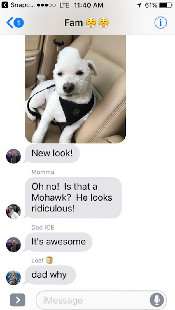dad ruined the dog, dad ruins dog, dad ruined dog text, dad ruined our dog, dad ruined dog tweet, dad ruined dog twitter, twitter dad ruined dog, dads and dogs, dogs and dads, funny dads dogs, funny dogs dads, funny dog, funny dogs, dog, dogs, dogs funny, dog funny, funny pictures of dogs, funny dogs and cats, funny pics of dogs, pictures of funny dogs, funny images of dogs, dogs being funny, cute funny dogs, funny photos of dogs, funny cute dogs, dogs with funny faces, images of funny dogs, funny dogs with captions, funny pictures of cats and dogs, funny pictures dogs, funny pictures of dogs and cats, pics of funny dogs, funny pictures of dogs with captions, cute and funny dogs, funny dogs images, really funny dogs, dogs images funny, funny dogs photos, very funny dogs, dogs are funny, funny funny dogs, dogs that are funny, funny pics of dogs with captions, funny small dogs, funny big dogs, funny and cute dogs, funny pics of dogs and cats, funny pics dogs, pictures of funny looking dogs, funny pics of cats and dogs, funny looking dogs pictures, funny little dogs, funny pictures with dogs, photos of funny dogs, most funny dogs, funny dogs and puppies, funny cats and funny dogs, funny pictures about dogs, i love funny dogs, pictures of funny dogs and cats, images funny dogs, really funny pictures of dogs, pictures funny dogs, funny dads, funny photos, funny pics, funny picture, best funny pictures, funny dads, dads funny, funniest dad ever, best dad ever, best dads ever, funniest dads ever, funniest dad photos 2016, funniest dad photos 2017, funniest dad photos 2018, funniest dad photos 2019, funny fathers, fathers funny, funny parents, parents funny, funniest parents ever, best parents ever, funniest dad pictures 2016, funniest dad pictures 2017, funniest dad pictures 2018, funniest dad pictures 2019, funniest dad pictures 2020, funniest parents 2016, funniest parents 2017, funniest parents 2018, funniest parents 2019, funniest parents 2020, funniest tweets, funny tweets, best tweets, top tweets, tweets, tweet, top tweet, best tweet, funny tweet, funniest tweet, hilarious tweets, very funny tweets, funniest tweets 2016, funniest tweets 2017, funniest tweets 2018, funniest tweets 2019, best tweets 2016, best tweets 2017, best tweets 2018, best tweets 2019, top tweets 2016, top tweets 2017, top tweets 2018, top tweets 2019, funny texts, funny texts to send, funny texts messages, funny vids, funny fail texts, really funny texts, funny random texts, funniest texts 2016, funniest texts 2017, funniest texts 2018, funniest texts 2019, funniest texts 2020, best texts 2016, best texts 2017, best texts 2018, best texts 2019, best texts 2020, funniest text messages, funniest text messages 2016, funniest text messages 2017, funniest text messages 2018, funniest text messages 2019, funniest text messages 2020, best texts 2016, best texts 2017, best texts 2018, best texts 2019, best texts 2020