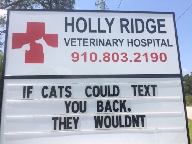 funny photos for facebook of cats could text vet sign