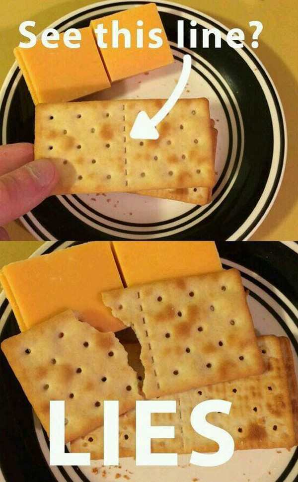 funny photo of line on breakable crackers lies