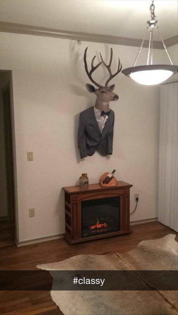 funny picture of classy bachelor pad