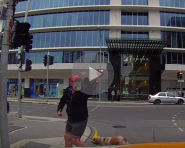funny video of an angry pedestrian getting instant karma by running into a pole