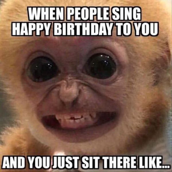 funny image of when people sing happy birthday to you monkey face