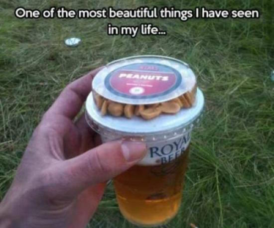 funny photo of peanuts with beer