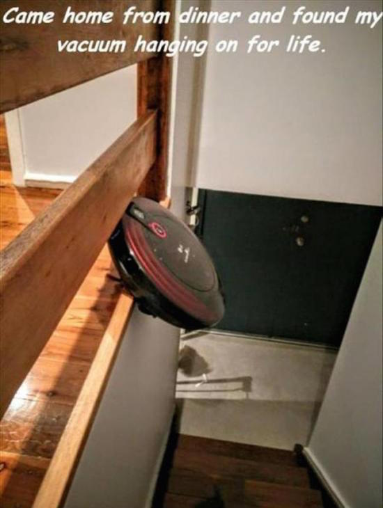 funny picture of vacuum falling over ledge