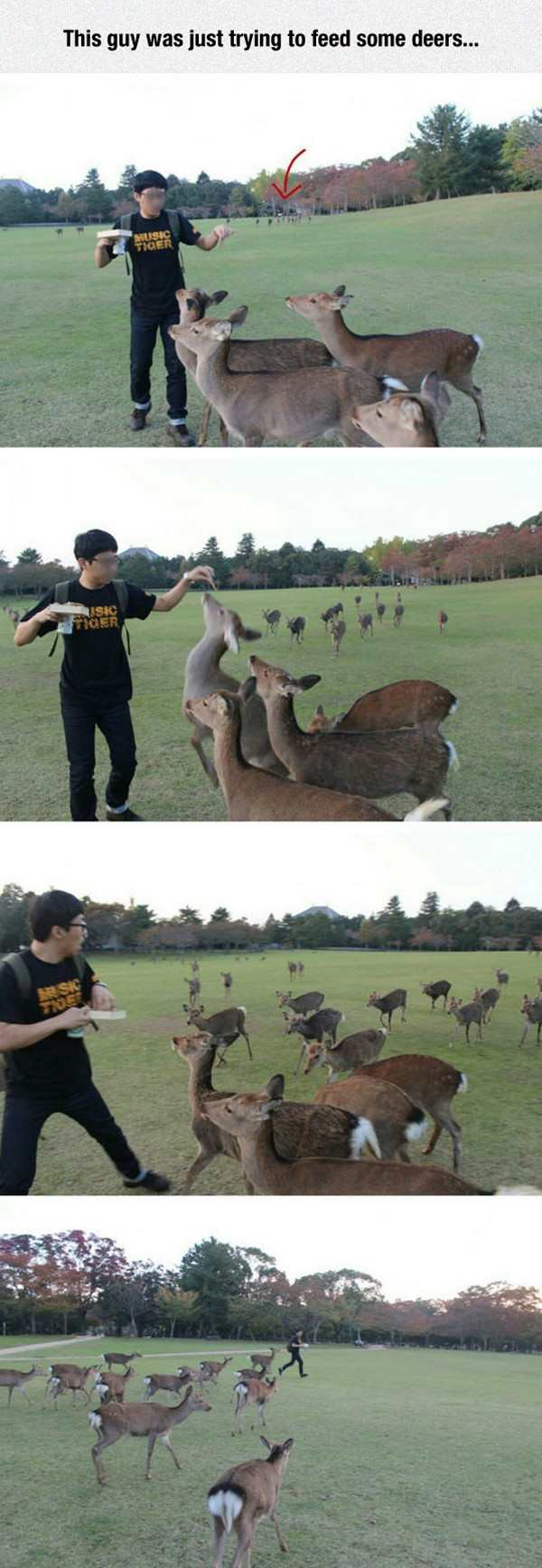 funny picture of guy feeding deer