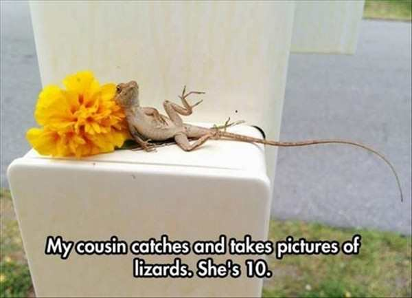 funny picture of cousin takes pictures of lizards