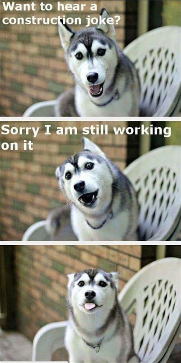 photo of husky construction joke