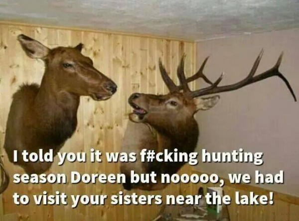 funny picture of talking deer heads