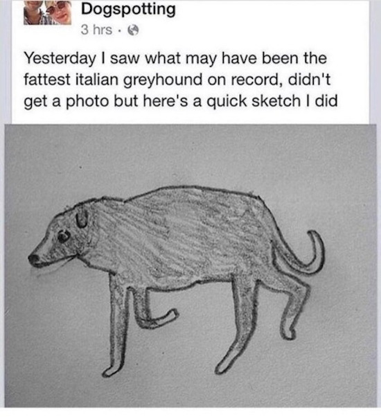 funny pic of horrible drawing of an italian greyhound