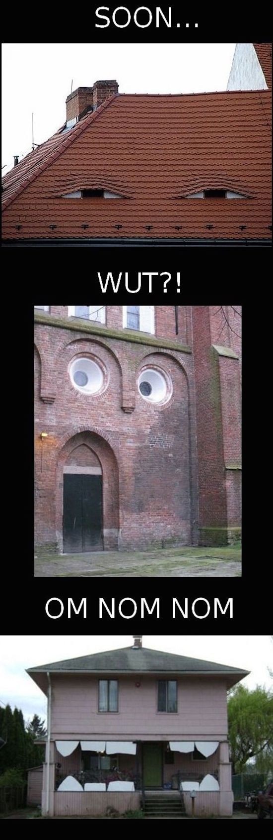 funny photo of houses with faces