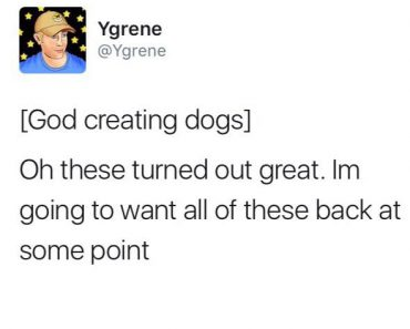 funny tweet about god creating dogs