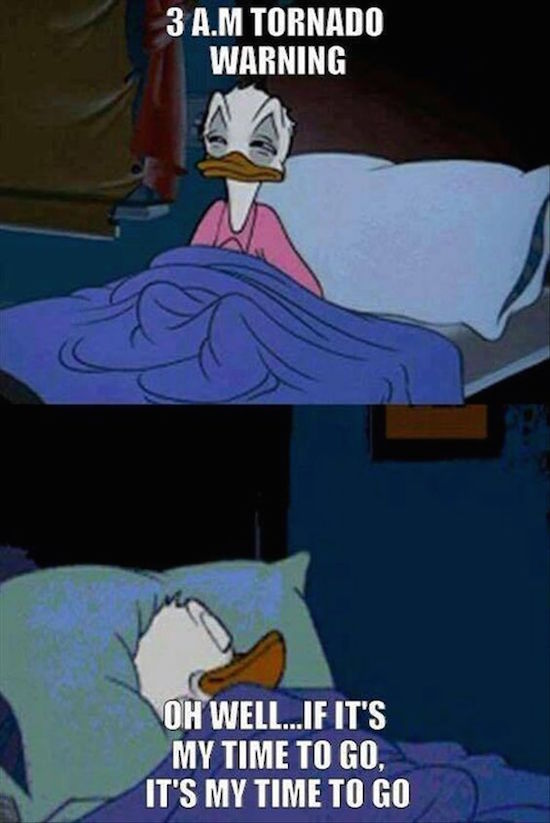 fotos divertidas de donald duck meme about 3am tornado warning