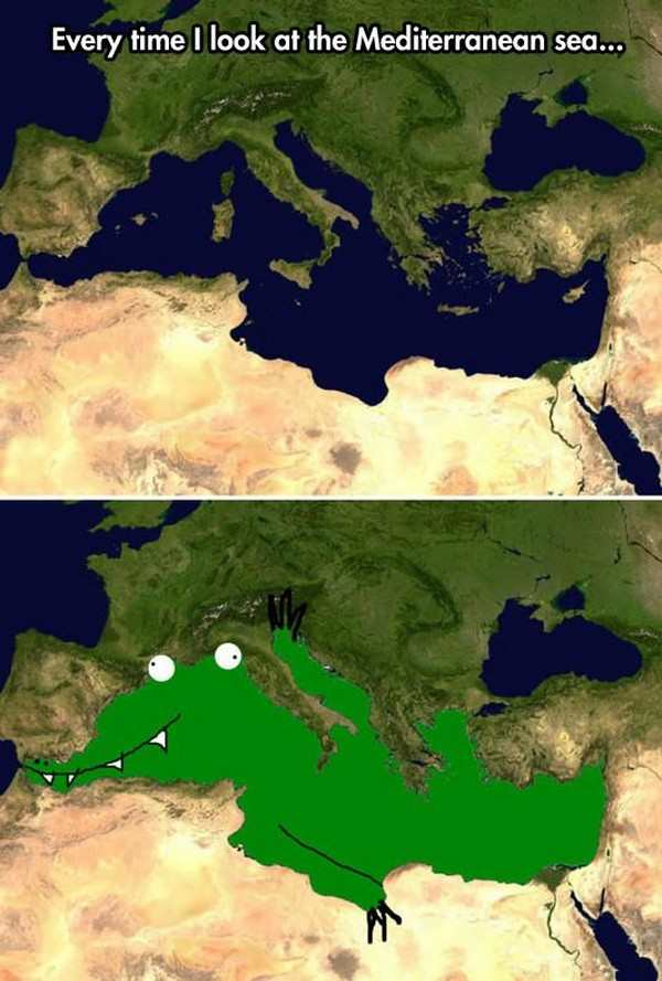 silly picture of mediterranean looks like a gator