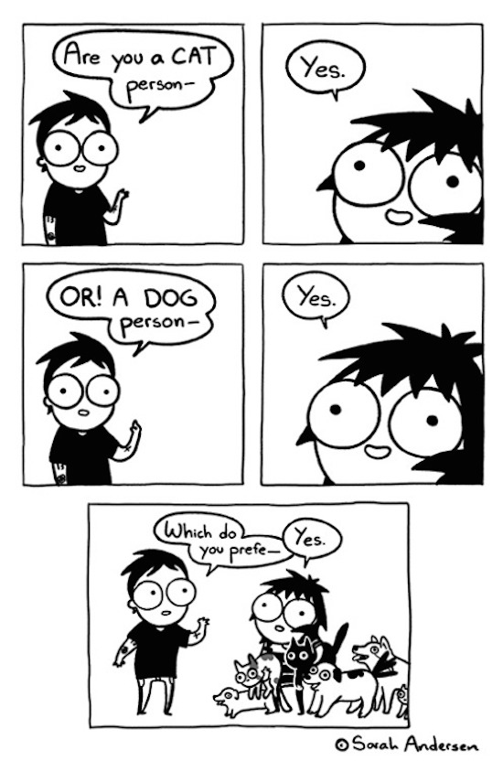 silly picture of sarah andersen comic about being a cat or dog person