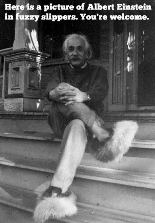 funny pic of albert einstein in fuzzy slippers