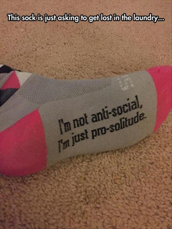 sock says i'm not anti-social just pro-solitude, best funny pictures, funny pics, funny photos, funny pictures, funny vids, the best funny pictures, really funny photos, funny photos of animals, funny photos 2016, funny photos 2017, funny photos 2018, funny photos 2019, funny pics 2016, funny pics 2017, funny pics 2018, funny pics 2019, funny pictures 2016, funny pictures 2017, funny pictures 2018, funny pictures 2019, funniest pics 2016, funniest pics 2017, funniest pics 2018, funniest pics 2019, funniest pictures 2016, funniest pictures 2017, funniest pictures 2018, funniest pictures 2019, funniest photos 2016, funniest photos 2017, funniest photos 2018, funniest photos 2019, where to find funny pictures, funny pictures which made everyone laugh, where funny pictures, where to download funny pictures, where to find funny pictures with captions, where to get funny pictures for instagram, where to find funny pictures to share, where to find funny pictures to share on facebook, where to see funny pictures, funny pictures for instagram, funny pictures for facebook, funny pictures for memes, funny pictures for wallpaper, funny pictures for him, funny pictures for her, funny pictures for friends, funny pictures for snapchat, funny pictures like uberhumor, funny pictures like 9gag, funny pictures like facebook, funny pictures like, funny pictures like ifunny, funny stuff like pictures, funny pictures to text, funny pictures to photoshop, funny pictures to send, funny pictures to caption, funny pictures to post, funny pictures to make someone feel better, funny pictures to put on facebook, funny pictures to make you laugh, funny pictures to make you smile, funny pictures to brighten your day, funny pictures to brighten someone's day, funny pictures with words, funny pictures with no words, funny pictures without captions, funny pictures with jokes, funny pictures with dogs, funny pictures with cats, funny pictures without words, funny pictures without text, where can I find funny photos, best photos ever, best photo ever,