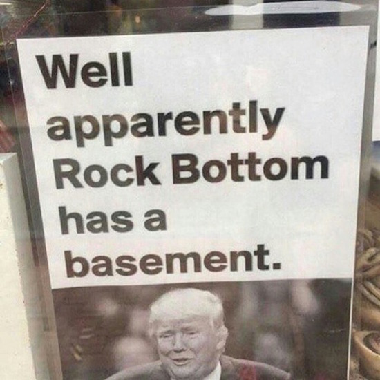 hilarious picture of rock bottom has basement trump