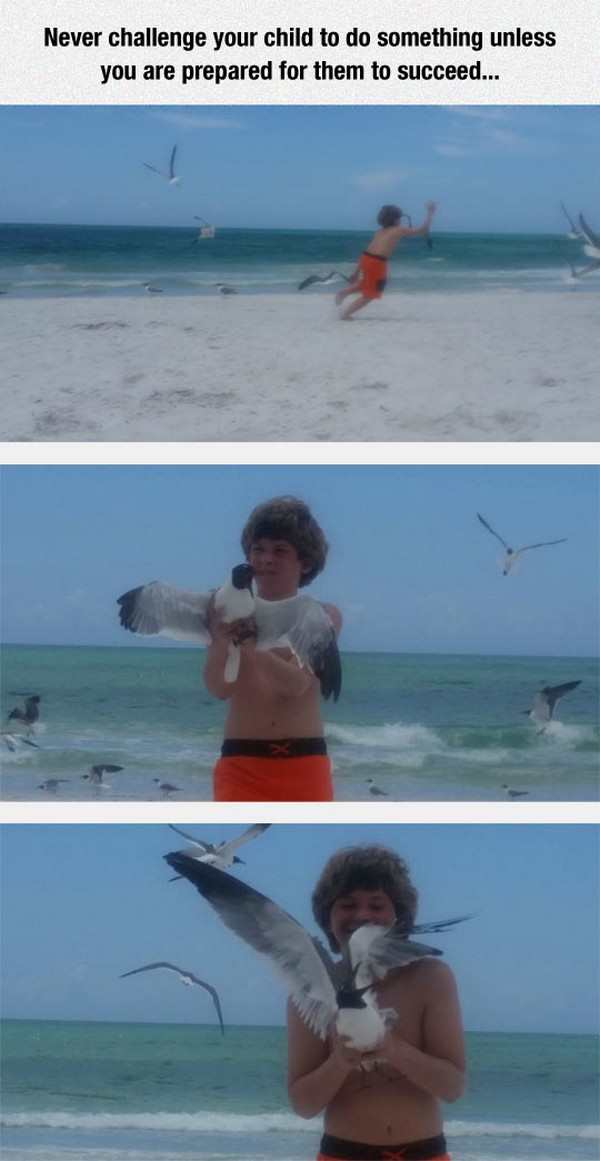 kid caught a seagull at the beach, best funny pictures, funny pics, funny photos, funny pictures, funny vids, the best funny pictures, really funny photos, funny photos of animals, funny photos 2016, funny photos 2017, funny photos 2018, funny photos 2019, funny pics 2016, funny pics 2017, funny pics 2018, funny pics 2019, funny pictures 2016, funny pictures 2017, funny pictures 2018, funny pictures 2019, funniest pics 2016, funniest pics 2017, funniest pics 2018, funniest pics 2019, funniest pictures 2016, funniest pictures 2017, funniest pictures 2018, funniest pictures 2019, funniest photos 2016, funniest photos 2017, funniest photos 2018, funniest photos 2019, where to find funny pictures, funny pictures which made everyone laugh, where funny pictures, where to download funny pictures, where to find funny pictures with captions, where to get funny pictures for instagram, where to find funny pictures to share, where to find funny pictures to share on facebook, where to see funny pictures, funny pictures for instagram, funny pictures for facebook, funny pictures for memes, funny pictures for wallpaper, funny pictures for him, funny pictures for her, funny pictures for friends, funny pictures for snapchat, funny pictures like uberhumor, funny pictures like 9gag, funny pictures like facebook, funny pictures like, funny pictures like ifunny, funny stuff like pictures, funny pictures to text, funny pictures to photoshop, funny pictures to send, funny pictures to caption, funny pictures to post, funny pictures to make someone feel better, funny pictures to put on facebook, funny pictures to make you laugh, funny pictures to make you smile, funny pictures to brighten your day, funny pictures to brighten someone's day, funny pictures with words, funny pictures with no words, funny pictures without captions, funny pictures with jokes, funny pictures with dogs, funny pictures with cats, funny pictures without words, funny pictures without text, where can I find funny photo