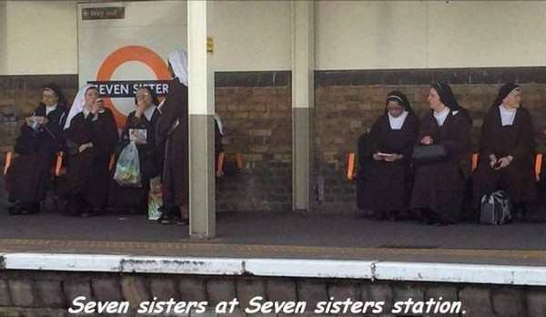 seven sisters at seven sisters station, best funny pictures, funny pics, funny photos, funny pictures, funny vids, the best funny pictures, really funny photos, funny photos of animals, funny photos 2016, funny photos 2017, funny photos 2018, funny photos 2019, funny pics 2016, funny pics 2017, funny pics 2018, funny pics 2019, funny pictures 2016, funny pictures 2017, funny pictures 2018, funny pictures 2019, funniest pics 2016, funniest pics 2017, funniest pics 2018, funniest pics 2019, funniest pictures 2016, funniest pictures 2017, funniest pictures 2018, funniest pictures 2019, funniest photos 2016, funniest photos 2017, funniest photos 2018, funniest photos 2019, where to find funny pictures, funny pictures which made everyone laugh, where funny pictures, where to download funny pictures, where to find funny pictures with captions, where to get funny pictures for instagram, where to find funny pictures to share, where to find funny pictures to share on facebook, where to see funny pictures, funny pictures for instagram, funny pictures for facebook, funny pictures for memes, funny pictures for wallpaper, funny pictures for him, funny pictures for her, funny pictures for friends, funny pictures for snapchat, funny pictures like uberhumor, funny pictures like 9gag, funny pictures like facebook, funny pictures like, funny pictures like ifunny, funny stuff like pictures, funny pictures to text, funny pictures to photoshop, funny pictures to send, funny pictures to caption, funny pictures to post, funny pictures to make someone feel better, funny pictures to put on facebook, funny pictures to make you laugh, funny pictures to make you smile, funny pictures to brighten your day, funny pictures to brighten someone's day, funny pictures with words, funny pictures with no words, funny pictures without captions, funny pictures with jokes, funny pictures with dogs, funny pictures with cats, funny pictures without words, funny pictures without text, where can I find funny photos,