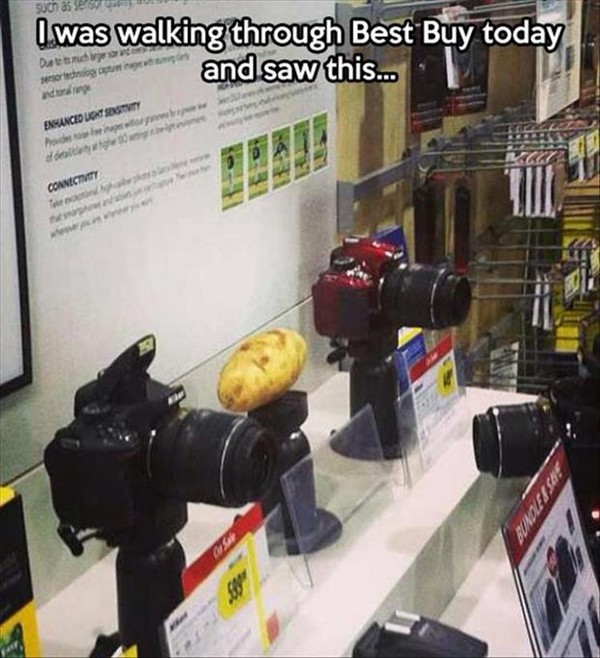 potato in best buy, best funny pictures, funny pics, funny photos, funny pictures, funny vids, the best funny pictures, really funny photos, funny photos of animals, funny photos 2016, funny photos 2017, funny photos 2018, funny photos 2019, funny pics 2016, funny pics 2017, funny pics 2018, funny pics 2019, funny pictures 2016, funny pictures 2017, funny pictures 2018, funny pictures 2019, funniest pics 2016, funniest pics 2017, funniest pics 2018, funniest pics 2019, funniest pictures 2016, funniest pictures 2017, funniest pictures 2018, funniest pictures 2019, funniest photos 2016, funniest photos 2017, funniest photos 2018, funniest photos 2019, where to find funny pictures, funny pictures which made everyone laugh, where funny pictures, where to download funny pictures, where to find funny pictures with captions, where to get funny pictures for instagram, where to find funny pictures to share, where to find funny pictures to share on facebook, where to see funny pictures, funny pictures for instagram, funny pictures for facebook, funny pictures for memes, funny pictures for wallpaper, funny pictures for him, funny pictures for her, funny pictures for friends, funny pictures for snapchat, funny pictures like uberhumor, funny pictures like 9gag, funny pictures like facebook, funny pictures like, funny pictures like ifunny, funny stuff like pictures, funny pictures to text, funny pictures to photoshop, funny pictures to send, funny pictures to caption, funny pictures to post, funny pictures to make someone feel better, funny pictures to put on facebook, funny pictures to make you laugh, funny pictures to make you smile, funny pictures to brighten your day, funny pictures to brighten someone's day, funny pictures with words, funny pictures with no words, funny pictures without captions, funny pictures with jokes, funny pictures with dogs, funny pictures with cats, funny pictures without words, funny pictures without text, where can I find funny photos, best photos ever, best photo ever,