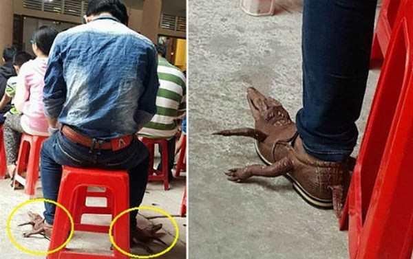 silly photo of crocodile shoes shaped like crocodiles