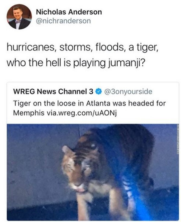 hurricanes tigers someone playing jumanji, best funny pictures, funny pics, funny photos, funny pictures, funny vids, the best funny pictures, really funny photos, funny photos of animals, funny photos 2016, funny photos 2017, funny photos 2018, funny photos 2019, funny pics 2016, funny pics 2017, funny pics 2018, funny pics 2019, funny pictures 2016, funny pictures 2017, funny pictures 2018, funny pictures 2019, funniest pics 2016, funniest pics 2017, funniest pics 2018, funniest pics 2019, funniest pictures 2016, funniest pictures 2017, funniest pictures 2018, funniest pictures 2019, funniest photos 2016, funniest photos 2017, funniest photos 2018, funniest photos 2019, where to find funny pictures, funny pictures which made everyone laugh, where funny pictures, where to download funny pictures, where to find funny pictures with captions, where to get funny pictures for instagram, where to find funny pictures to share, where to find funny pictures to share on facebook, where to see funny pictures, funny pictures for instagram, funny pictures for facebook, funny pictures for memes, funny pictures for wallpaper, funny pictures for him, funny pictures for her, funny pictures for friends, funny pictures for snapchat, funny pictures like uberhumor, funny pictures like 9gag, funny pictures like facebook, funny pictures like, funny pictures like ifunny, funny stuff like pictures, funny pictures to text, funny pictures to photoshop, funny pictures to send, funny pictures to caption, funny pictures to post, funny pictures to make someone feel better, funny pictures to put on facebook, funny pictures to make you laugh, funny pictures to make you smile, funny pictures to brighten your day, funny pictures to brighten someone's day, funny pictures with words, funny pictures with no words, funny pictures without captions, funny pictures with jokes, funny pictures with dogs, funny pictures with cats, funny pictures without words, funny pictures without text, where can I find funny photos, best photos ever, best photo ever, silly photos, silly pictures, silly pics,
