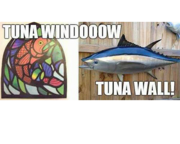 tuna window tuna wall, to the window to the wall, best funny pictures, funny pics, funny photos, funny pictures, funny vids, the best funny pictures, really funny photos, funny photos of animals, funny photos 2016, funny photos 2017, funny photos 2018, funny photos 2019, funny pics 2016, funny pics 2017, funny pics 2018, funny pics 2019, funny pictures 2016, funny pictures 2017, funny pictures 2018, funny pictures 2019, funniest pics 2016, funniest pics 2017, funniest pics 2018, funniest pics 2019, funniest pictures 2016, funniest pictures 2017, funniest pictures 2018, funniest pictures 2019, funniest photos 2016, funniest photos 2017, funniest photos 2018, funniest photos 2019, where to find funny pictures, funny pictures which made everyone laugh, where funny pictures, where to download funny pictures, where to find funny pictures with captions, where to get funny pictures for instagram, where to find funny pictures to share, where to find funny pictures to share on facebook, where to see funny pictures, funny pictures for instagram, funny pictures for facebook, funny pictures for memes, funny pictures for wallpaper, funny pictures for him, funny pictures for her, funny pictures for friends, funny pictures for snapchat, funny pictures like uberhumor, funny pictures like 9gag, funny pictures like facebook, funny pictures like, funny pictures like ifunny, funny stuff like pictures, funny pictures to text, funny pictures to photoshop, funny pictures to send, funny pictures to caption, funny pictures to post, funny pictures to make someone feel better, funny pictures to put on facebook, funny pictures to make you laugh, funny pictures to make you smile, funny pictures to brighten your day, funny pictures to brighten someone's day, funny pictures with words, funny pictures with no words, funny pictures without captions, funny pictures with jokes, funny pictures with dogs, funny pictures with cats, funny pictures without words, funny pictures without text, where can I find funny photos, best photos ever, best photo ever, silly photos, silly pictures, silly pics,