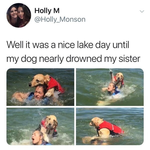 best funny pictures, funny pics, funny photos, funny pictures, funny vids, the best funny pictures, really funny photos, funny photos of animals, funny photos 2016, funny photos 2017, funny photos 2018, funny photos 2019, funny pics 2016, funny pics 2017, funny pics 2018, funny pics 2019, funny pictures 2016, funny pictures 2017, funny pictures 2018, funny pictures 2019, funniest pics 2016, funniest pics 2017, funniest pics 2018, funniest pics 2019, funniest pictures 2016, funniest pictures 2017, funniest pictures 2018, funniest pictures 2019, funniest photos 2016, funniest photos 2017, funniest photos 2018, funniest photos 2019, where to find funny pictures, funny pictures which made everyone laugh, where funny pictures, where to download funny pictures, where to find funny pictures with captions, where to get funny pictures for instagram, where to find funny pictures to share, where to find funny pictures to share on facebook, where to see funny pictures, funny pictures for instagram, funny pictures for facebook, funny pictures for memes, funny pictures for wallpaper, funny pictures for him, funny pictures for her, funny pictures for friends, funny pictures for snapchat, funny pictures like uberhumor, funny pictures like 9gag, funny pictures like facebook, funny pictures like, funny pictures like ifunny, funny stuff like pictures, funny pictures to text, funny pictures to photoshop, funny pictures to send, funny pictures to caption, funny pictures to post, funny pictures to make someone feel better, funny pictures to put on facebook, funny pictures to make you laugh, funny pictures to make you smile, funny pictures to brighten your day, funny pictures to brighten someone's day, funny pictures with words, funny pictures with no words, funny pictures without captions, funny pictures with jokes, funny pictures with dogs, funny pictures with cats, funny pictures without words, funny pictures without text, where can I find funny photos, best photos ever, best photo eve